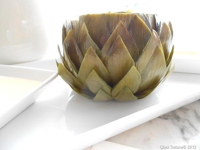 Lotus artichoke