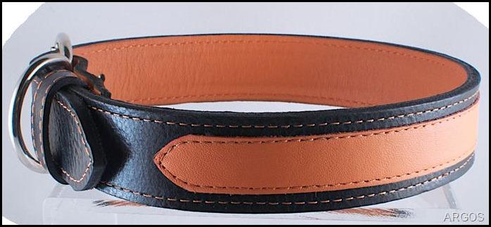 orange collar