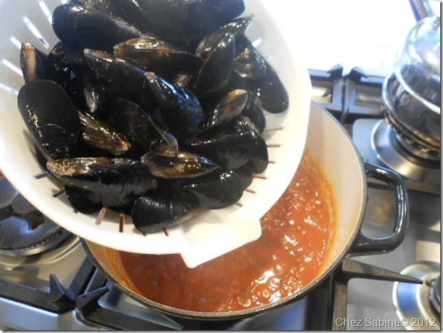 Mussels 041