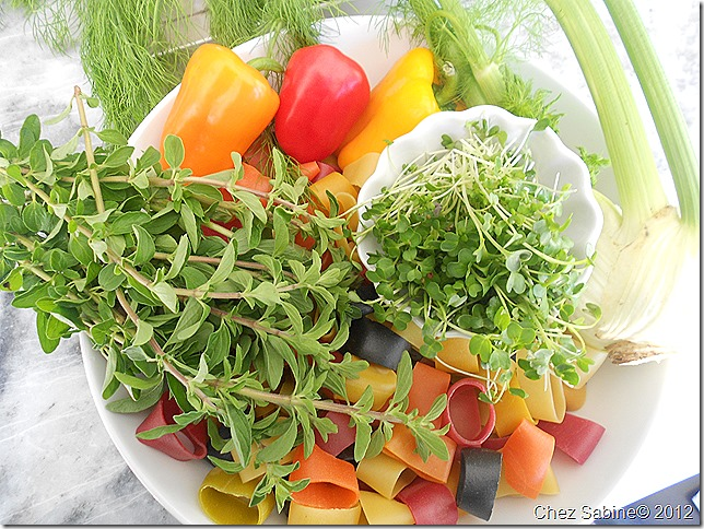 Salmon pasta salad 030