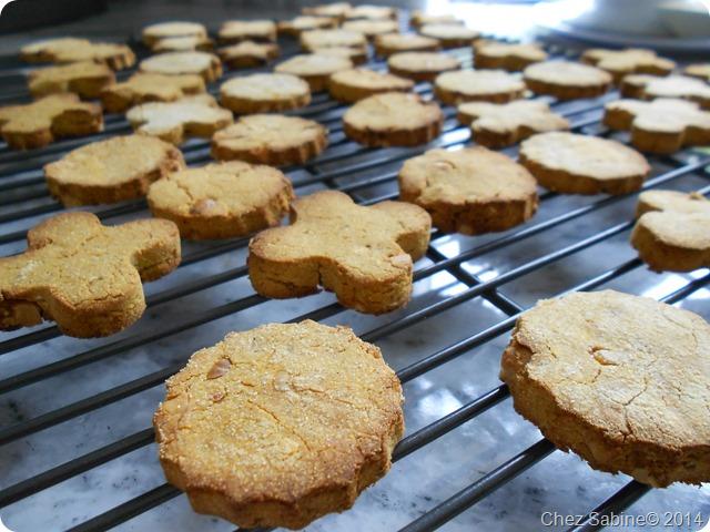 Dog cookies 048