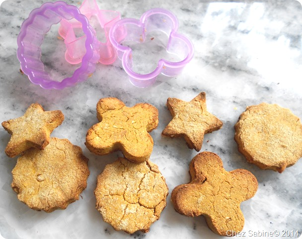Dog cookies 053